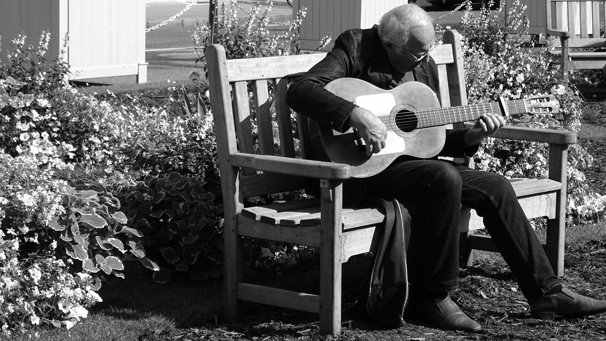 Photo: Older man playing a guitar on a bench