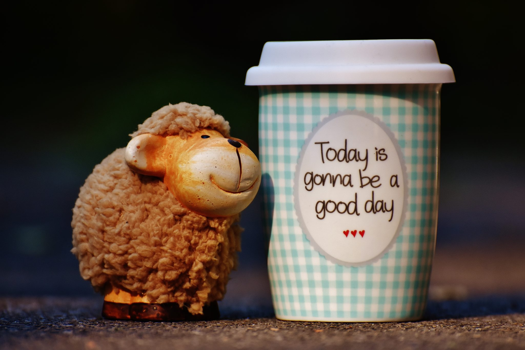 """Photo: lamb sitting next to a coffee cup that says """"Today is gonna be a good day"""""""